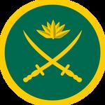 rsz_army